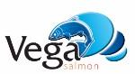 vega_logo_web150